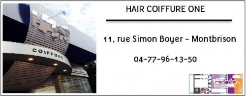 Hair coiffure One.jpg