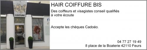 hair coiffure bis.jpg