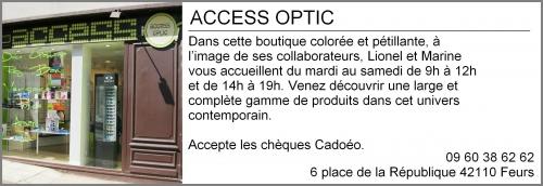 Access optic.jpg